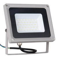 Прожектор светодиодный Elektrostandard 006 FL LED 30W 6500K 4690389101243
