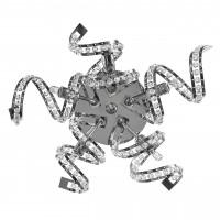 Бра Lightstar Spider 742654