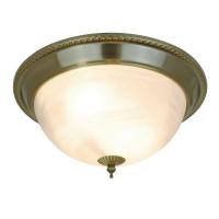 Потолочный светильник Arte Lamp 16 A1305PL-2AB