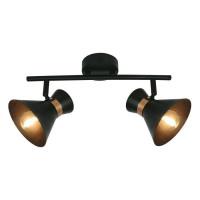 Спот Arte Lamp Baltimore A1406AP-2BK