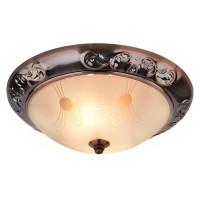 Потолочный светильник Arte Lamp 28 A3014PL-2AC