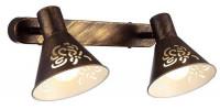 Спот Arte Lamp Cono A5218AP-2BR