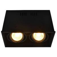 Потолочный светильник Arte Lamp Cardani A5942PL-2BK