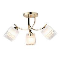 Потолочная люстра Arte Lamp 5 A6119PL-3GO