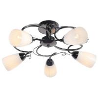Потолочная люстра Arte Lamp 50 A6545PL-5BC