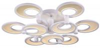 Потолочный светодиодный светильник ST Luce Nola SL898.502.09